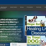 Hope for Healing Liver Disease in Your DogHope for Healing Liver Disease in Your Dog by Cyndi Smasal