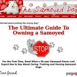 The Samoyed Dog – the Smiling Breed