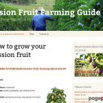 Passion Fruit Farming Guide | Guide to Profitable Passion Fruit Farming