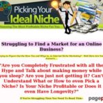 Picking Your Ideal Niche
