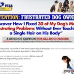 All Star Dogs – The Secret To Making Your Dog An All-Star
