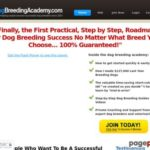 Dog Breeding Academy