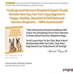 German Shepherd Handbook | German Shepherd Training Tips