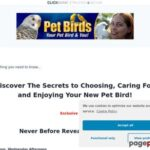 Discover The Secrets to Choosing, Caring For, and Enjoying Your New Pet Bird! – Pet Bird eBook
