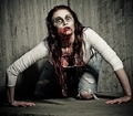 Everything You Need to Survive the Zombie Apocalypse