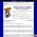 Chihuahua Care Handbook – The Ultimate Chihuahua Guide